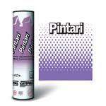 Pintari (єндова)
