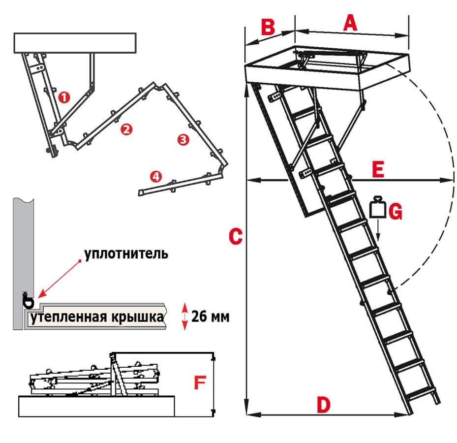 Схема лестницы Compact Termo