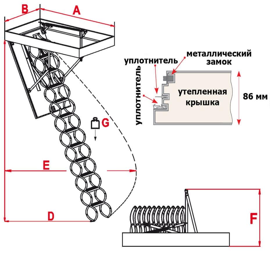 Схема лестницы Flex Polar