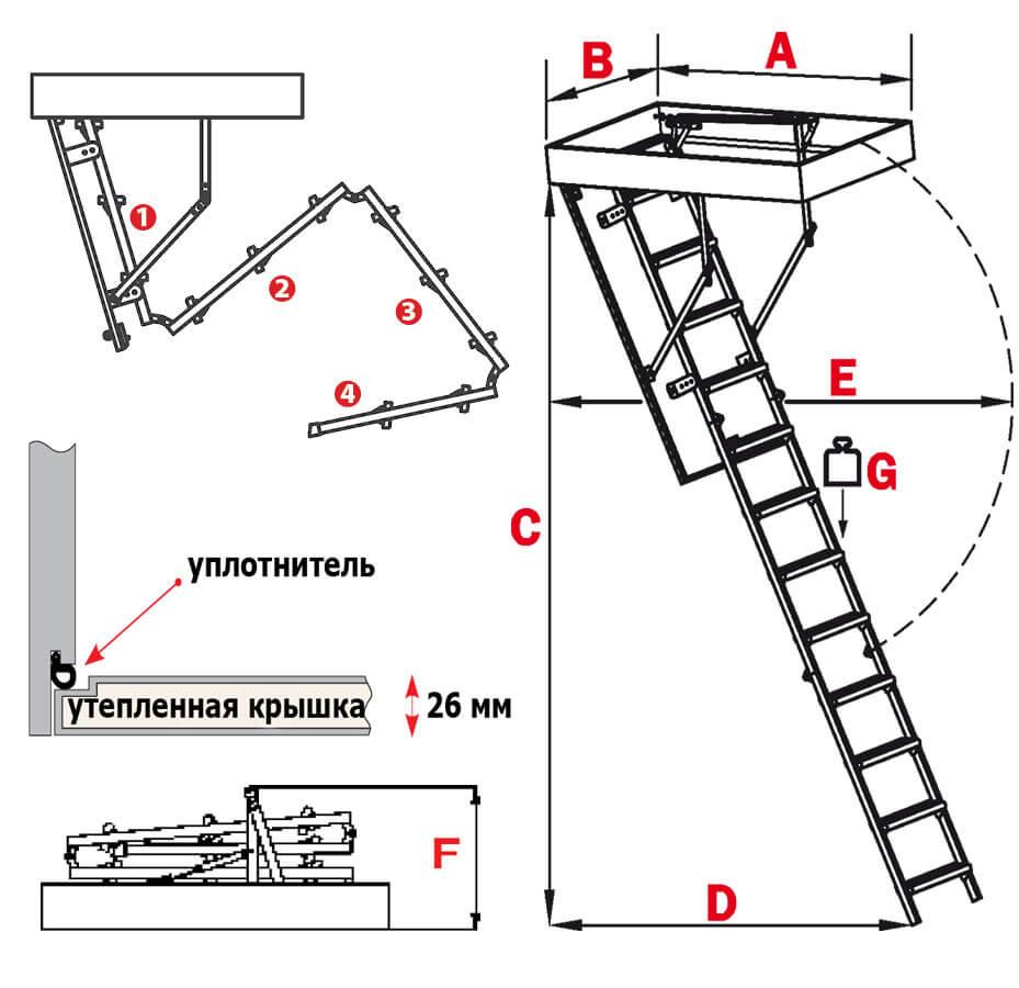 Схема лестницы Long Tremo S