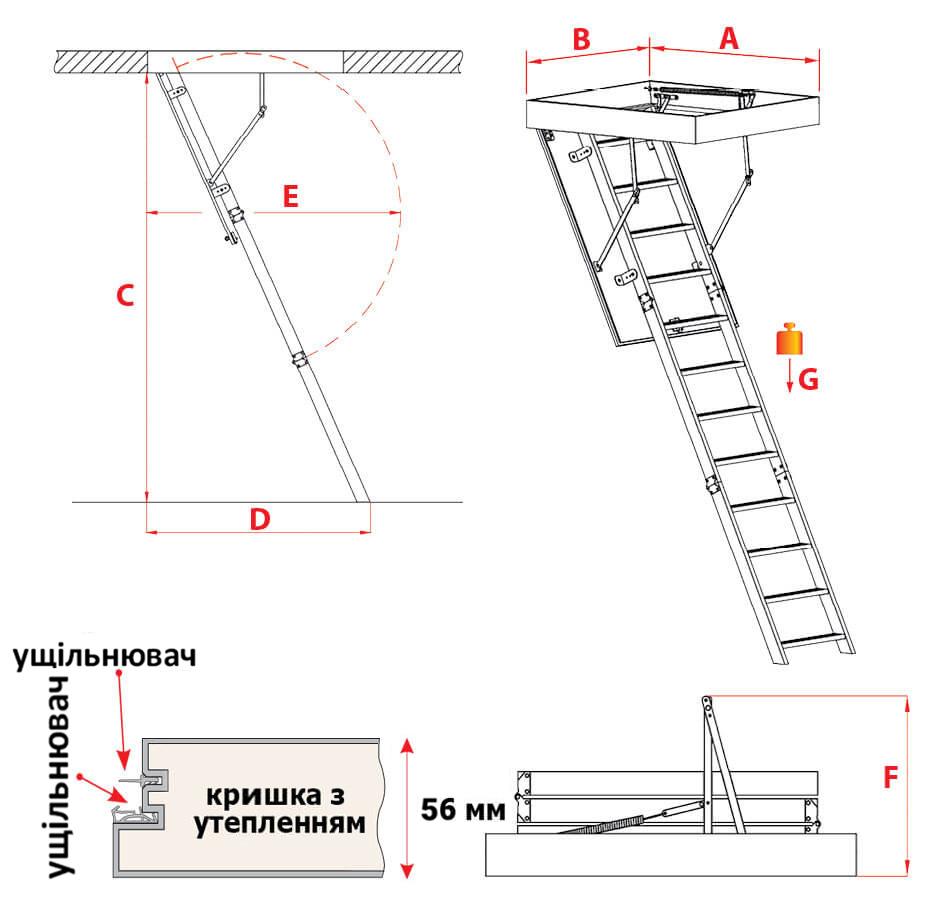 Схема сходів Maxi