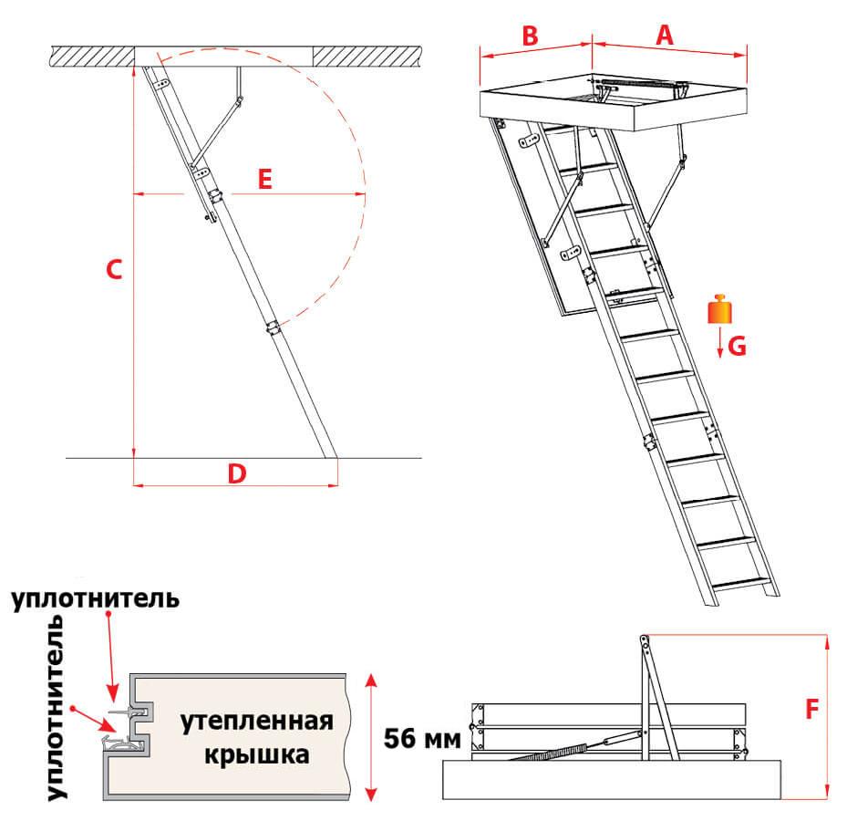 Схема лестницы Maxi