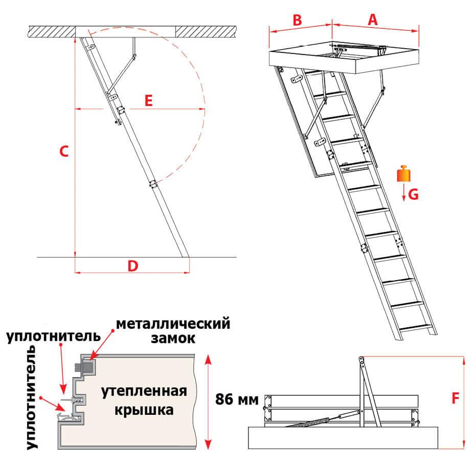 Схема лестницы Polar Plus