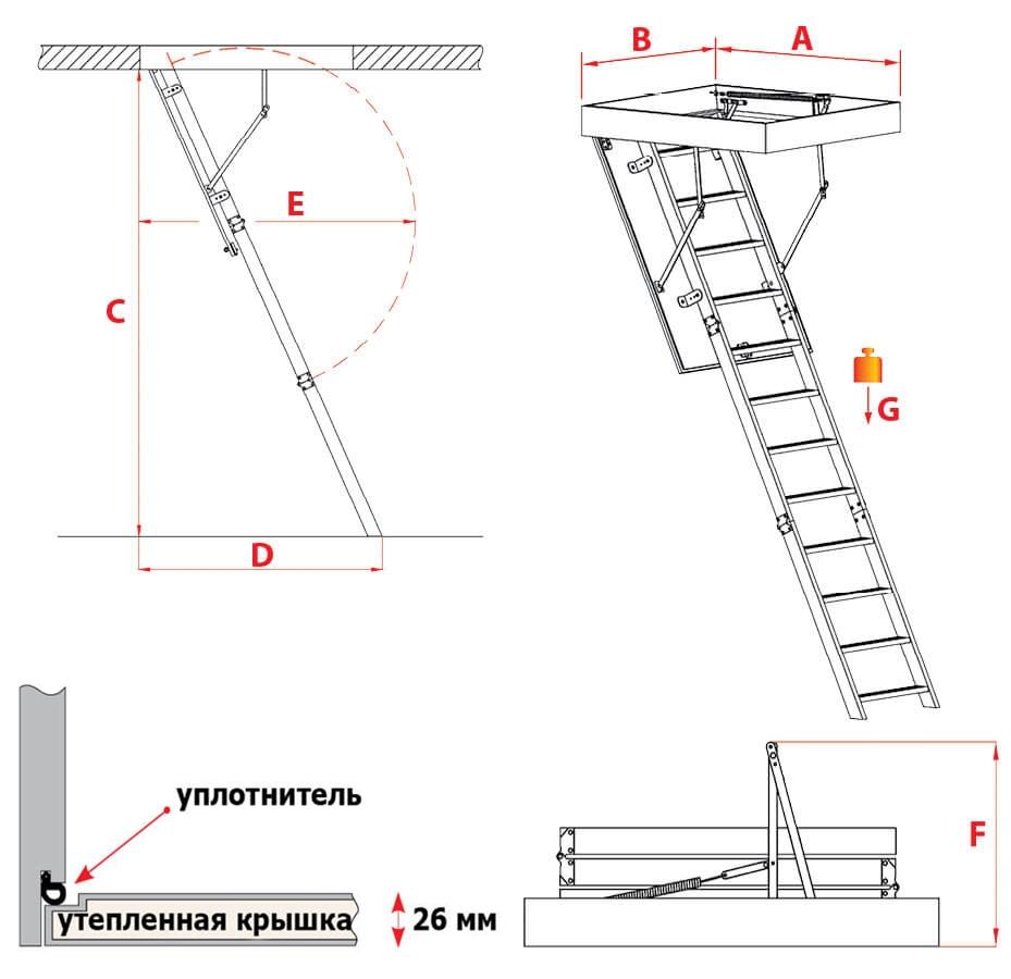 Схема лестницы Stallux Termo