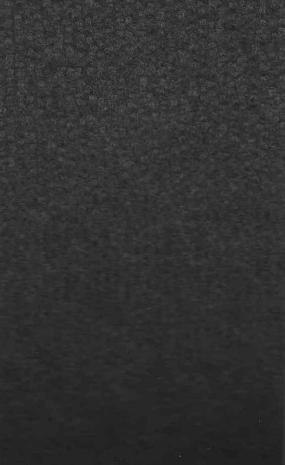 Ковролин выставочный Index 9890